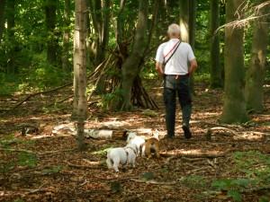 på tur i hundeskoven