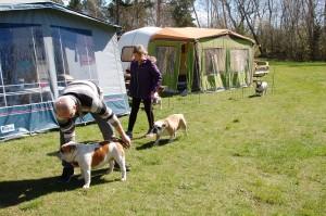 campingtur til Lolland