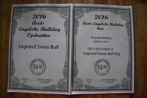 så fik vi certifikater på at Frej blev årets Bulldog og af vi blev årets Opdrætter