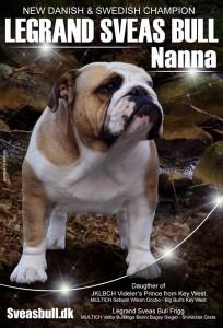 Nanna er Dansk og Svensk Champion