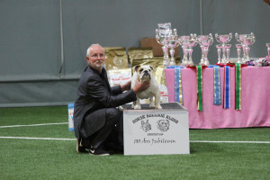 Sigyn blev bedste junior i Bø i Norge 15 måneder gammel